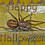 Happy Halloween Spider Greeting Card Poster