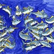 Happy Tuna Poster