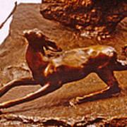 He Who Saved The Deer - Deer Detail Poster