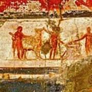 Herculaneum Wall Painting Poster