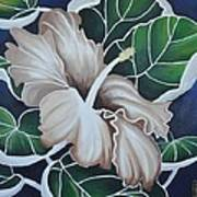 Hibiscus Poster by Holly Donohoe
