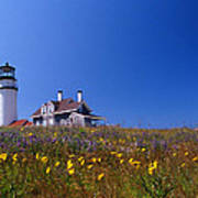 Highland Lighthouse Cape Cod Poster by Skip Willits