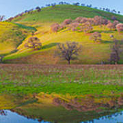 Hill Reflection In Pond Poster