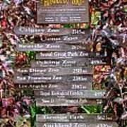 Honolulu Zoo Signs Poster