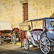 Horse Drawn Carriages In Guadalajara Poster