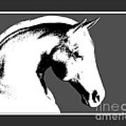Horse In Black And White Poster