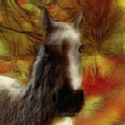 Horse On The Farm Poster