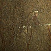 Horseback In The Garden Poster by Lenore Senior