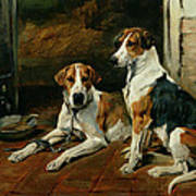 Hounds In A Stable Interior Poster
