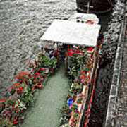Houseboats In Paris Poster by Elena Elisseeva