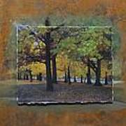 Humboldt Park Trees Layered Poster
