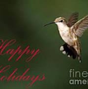 Hummingbird Holiday Card Poster