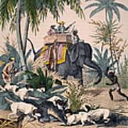 Hunting: Big Game, 1852 Poster