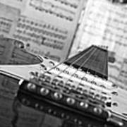 Ibanez Six String Black And White Poster