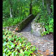Ichetucknee Stairway Poster