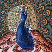India: Peacock Poster