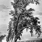 Iowa: Council Bluffs, 1855 Poster