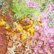 Iris Abstract I Poster