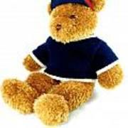 Isolated Teddy Bear Poster