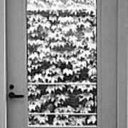 Ivy Door Poster