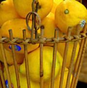 Just Lemons Poster