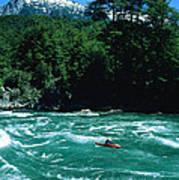 Kayaker Surfing Terminator Rapid Waves Poster