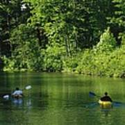 Kayakers Paddle In The Headwaters Poster