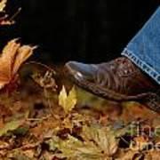 Kicking Fallen Autumn Leaves Poster by Oleksiy Maksymenko