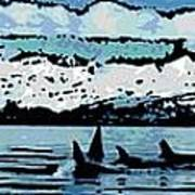 Killer Whales Poster