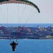 La Jolla Hang Glider  Poster