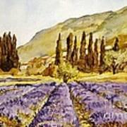 La Provence Poster