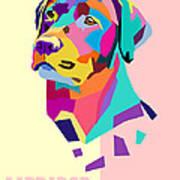 Labrador Portrait Poster