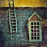 Ladder On Roof Poster