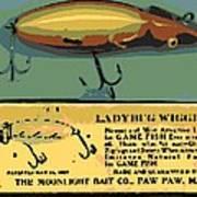 Lady Bug Wiggler Poster