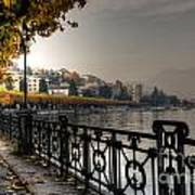 Lake Front With Autumn Trees Poster