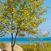 Lake Huron Seashore Poster