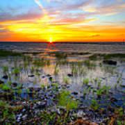 Lake Okeechobee Sunset Poster