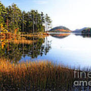 Lake Reflections In Acadia Poster