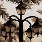Lanterns And Fronds Poster