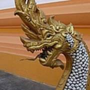 Laos Naga  Poster