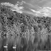 Late Afternoon At The Lake - Bw Poster