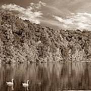 Late Afternoon At The Lake - S Poster