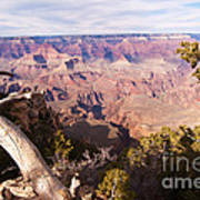 Late Afternoon At The South Rim Poster
