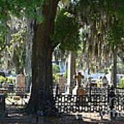 Laurel Grove Cemetery - Savannah Georgia Poster by Randy Edwards