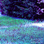 Lawn Blue Poster