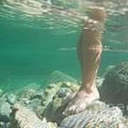 Legs Underwater Poster