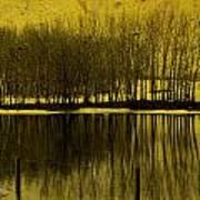 Lemon Lake Poster