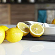 Lemons And Juicer On Kitchen Counter Poster