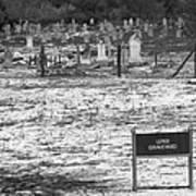 Leper Graveyard On Robben Island Poster