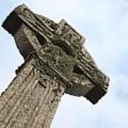 Lichen Cross Poster